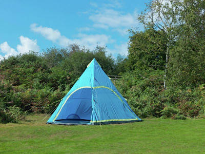 super popular 280b3 63499 Argos Product Support for GV TEEPEE 6 MAN BLUE (483/0331)